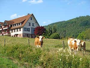 Ferienwohnung in Klosterreichenbach
