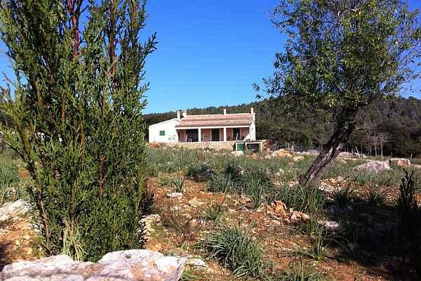 Sommerhus i Crestatx