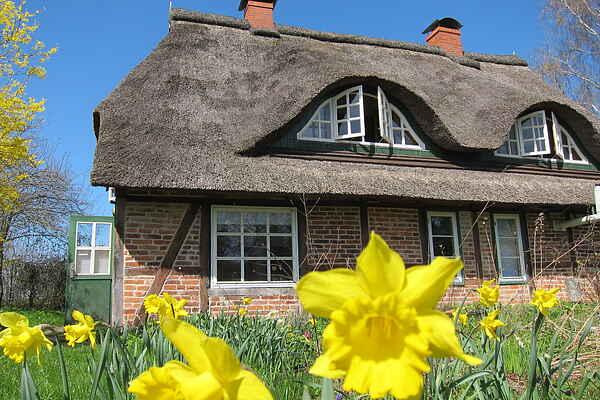 Holiday home in Diekhof