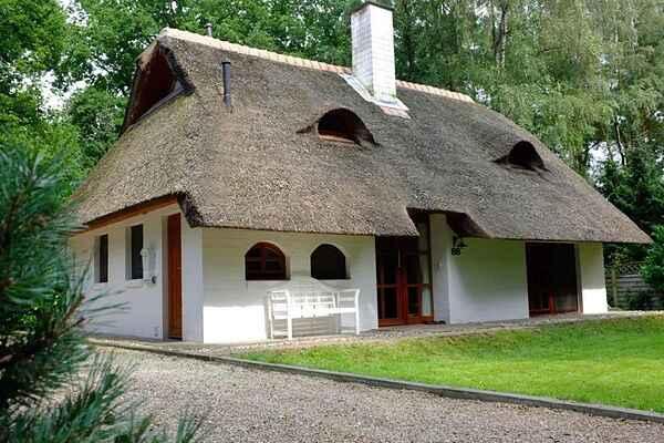 Sommerhus i Uelsen