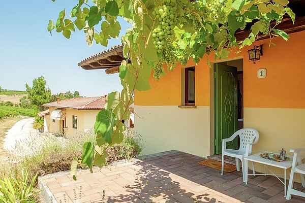 Apartment in Montecalvo Versiggia