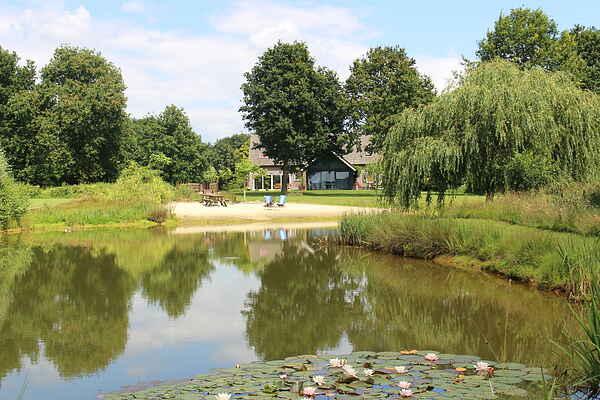 Sommerhus i Siebengewald