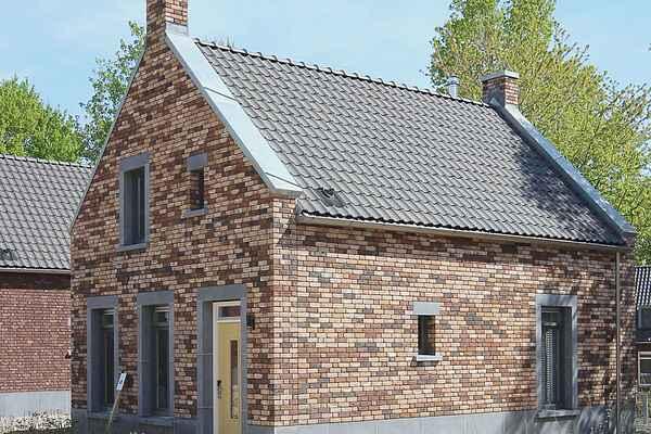 Ferienhaus in Dousberg-Hazendans