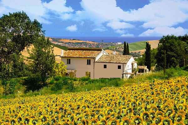 Farm house in Fermo