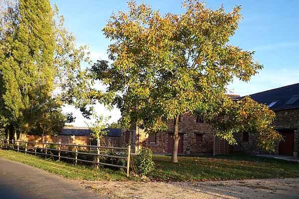 Holiday home in Champteussé-sur-Baconne