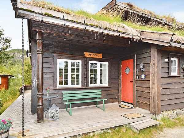 Sommerhus i Hovden i Setesdal