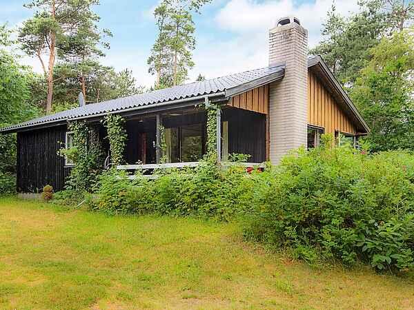 Maison de vacances au Boeslum Bakker