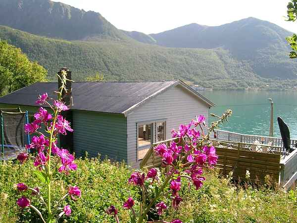 Holiday home in Sifjord