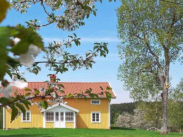 Holiday home in Ulricehamn NO